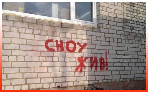 Сноу жив Ижевск